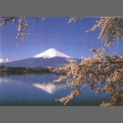 Mt. Fujiyama Mural