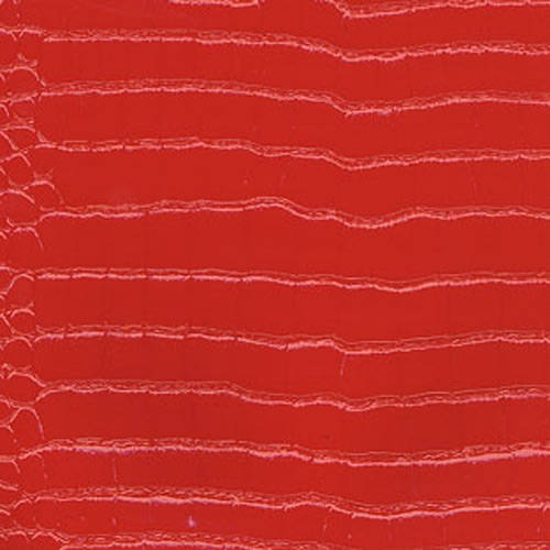 Textured Reptile Skin
