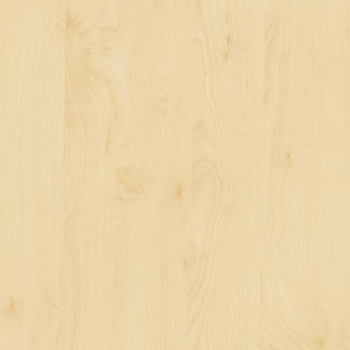 Birch Wood Contact Paper