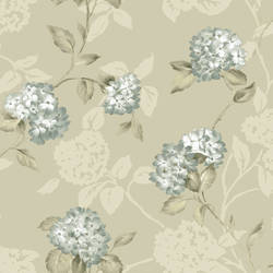 Voluta Cream Acanthus Scroll ARB67556
