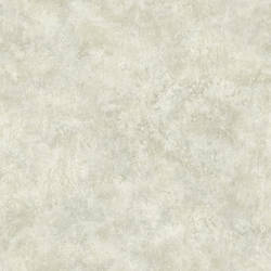 Kassey Grey Distressed Texture ARB67594