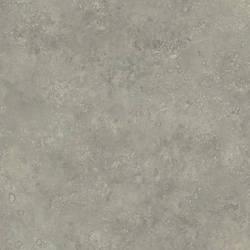 Grey Camille Texture ART25072