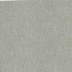 Silver Poplin BT44042