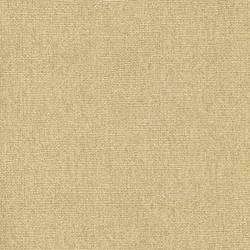 Yellow Poplin BT44044