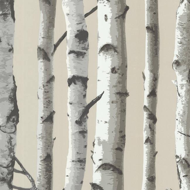 Irvin Grey Birch Tree 2532-20418