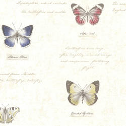 Admiral Beige Butterflies and Script 2532-20453