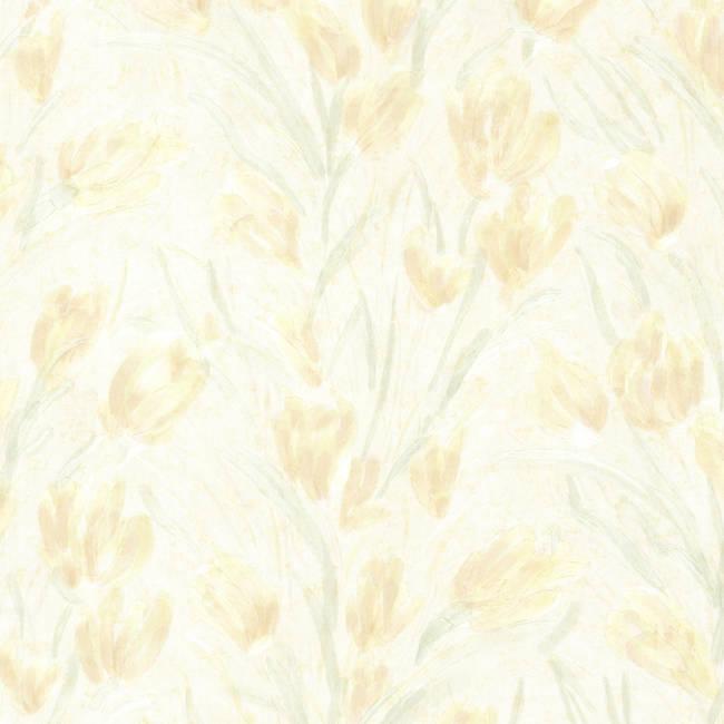 Jessamine Light Yellow Tulips 2532-20472