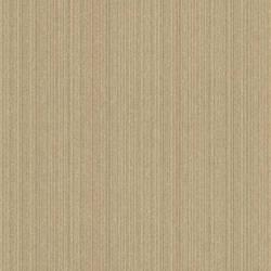 Noelia Bronze Strie Stripe 2614-21013