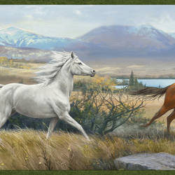 Sally Blue Wild Horses Portrait Border BBC48481B