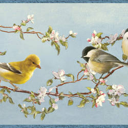Daphne Blue Songbird Trail Border BBC48511B