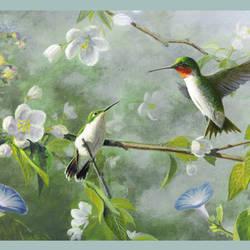 Ruby Green Hummingbird Garden Border BBC48531B