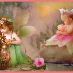 Esmeralda pink Fairyland Portrait Border BBC94081B