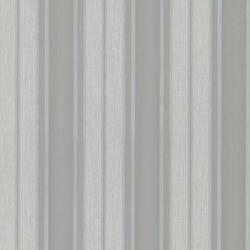 Knight Silver Elegant Stripe 492-2312