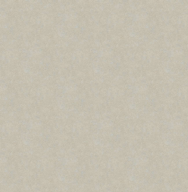 Allen Grey Texture Wallpaper CHR34049