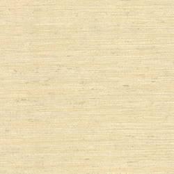 Allen Beige Faux Grasscloth 2446-83546