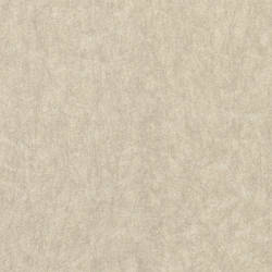 Cartier Taupe Cracked Texture 2446-83567