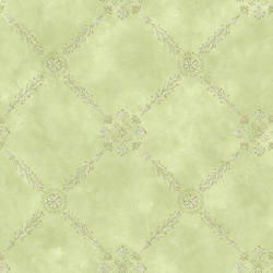 Rebecca Green Trellis Criss Cross Wallpaper CG11347