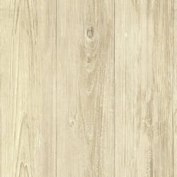 Mapleton Birch Faux Wood Texture CTR64226