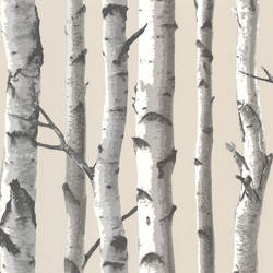 Tuxbury Beige Birch Tree TLL21499