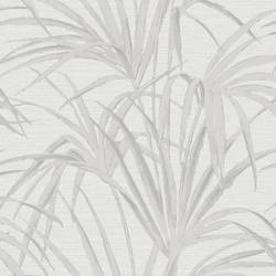 Song White Fountain Palm 2669-21720