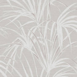 Song Grey Fountain Palm 2669-21721
