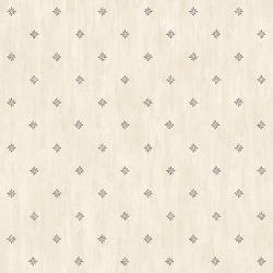 Neutral Stencil Starburst FFR66381