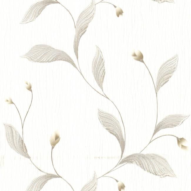 Ixia Silver Lily Trail 436-5680