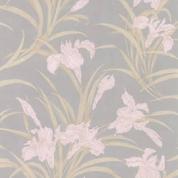 Vivianne Grey Iris Floral 436-66624