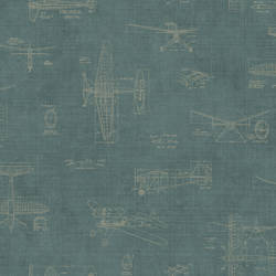 Douglas Teal Vintage Planes MAN02725