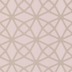 Enterprise Light Pink Lattice 488-31244
