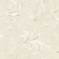 Grey Ogee Acanthus Scroll HAV40791