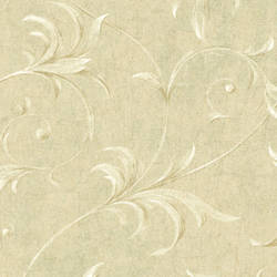 Cream Ogee Acanthus Scroll HAV40794