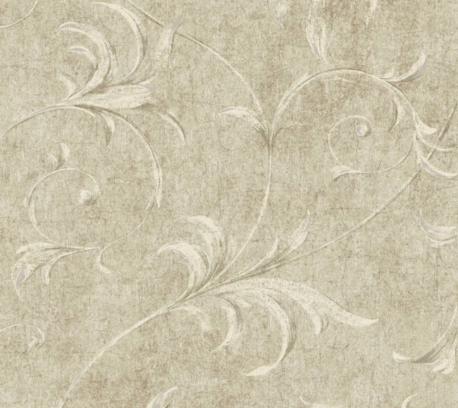 Beige Ogee Acanthus Scroll HAV40796