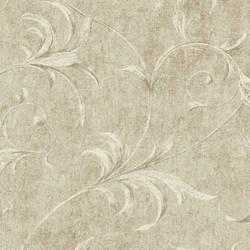 Beige Ogee Acanthus Scroll HAV40796