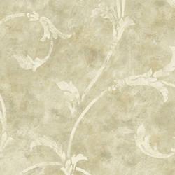 Bronze Silver Scroll HAV40834