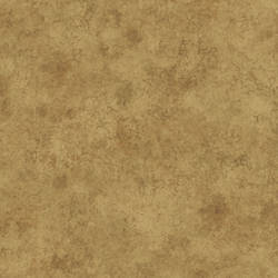 Gold Fusion Texture HAV40866