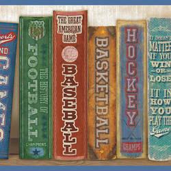 Stevie Blue Play the Game Bookshelf Border HAS01071B