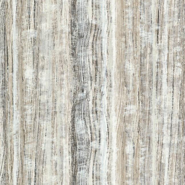 Radiance Black Stripe Texture HZN43081