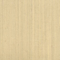 Ruslan Champagne Grasscloth 2622-30216