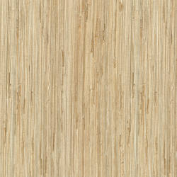 Daria Neutral Grasscloth 2622-65621
