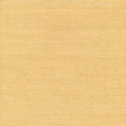 Aiko Mustard Grasscloth 53-65400