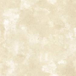 Palladium Beige Marble Texture 991-68251