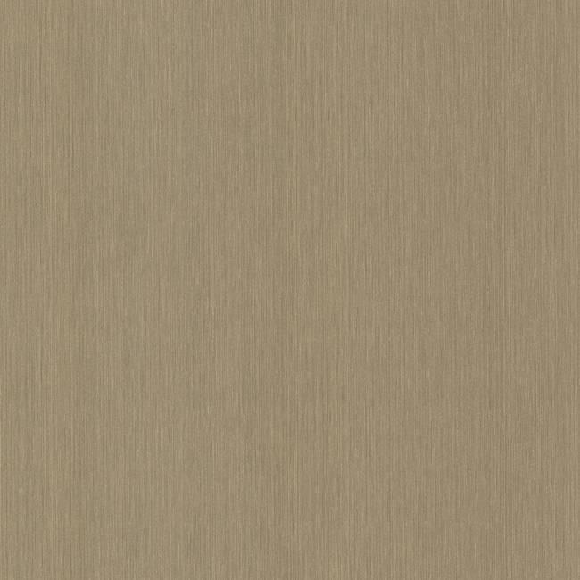 Samson Brass String Texture 993-65066