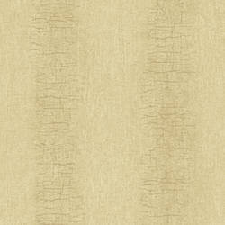 Patna Brown Distressed Texture RW30703