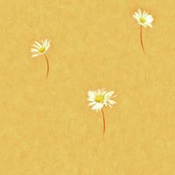 Selby Orange Single Daisy Toss 347-FI46023