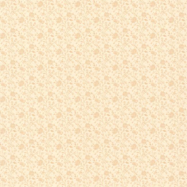 Emilia Beige Small Daisy 414-58503