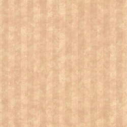 Stria Taupe Stripe 414-65783