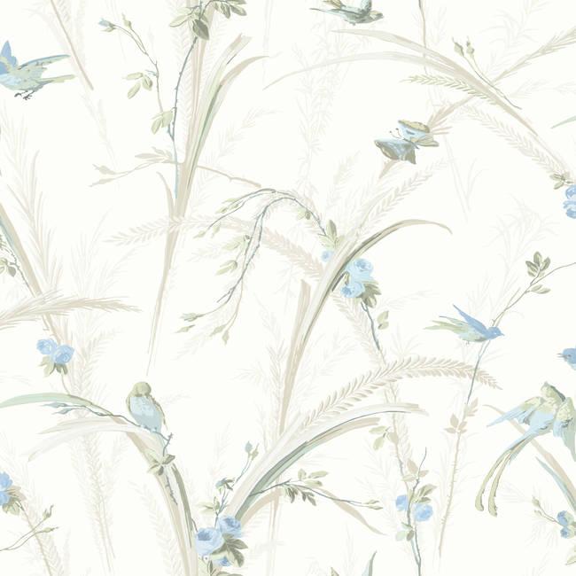 Cheshire Blue Meadowlark Trail MEA19326