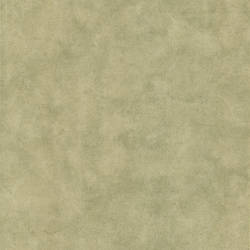 Pietra Light Brown Texture 987-56532