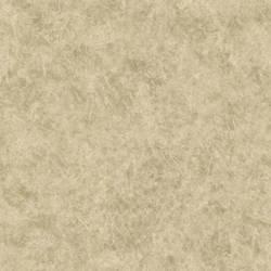 Raso Beige Texture 987-56541